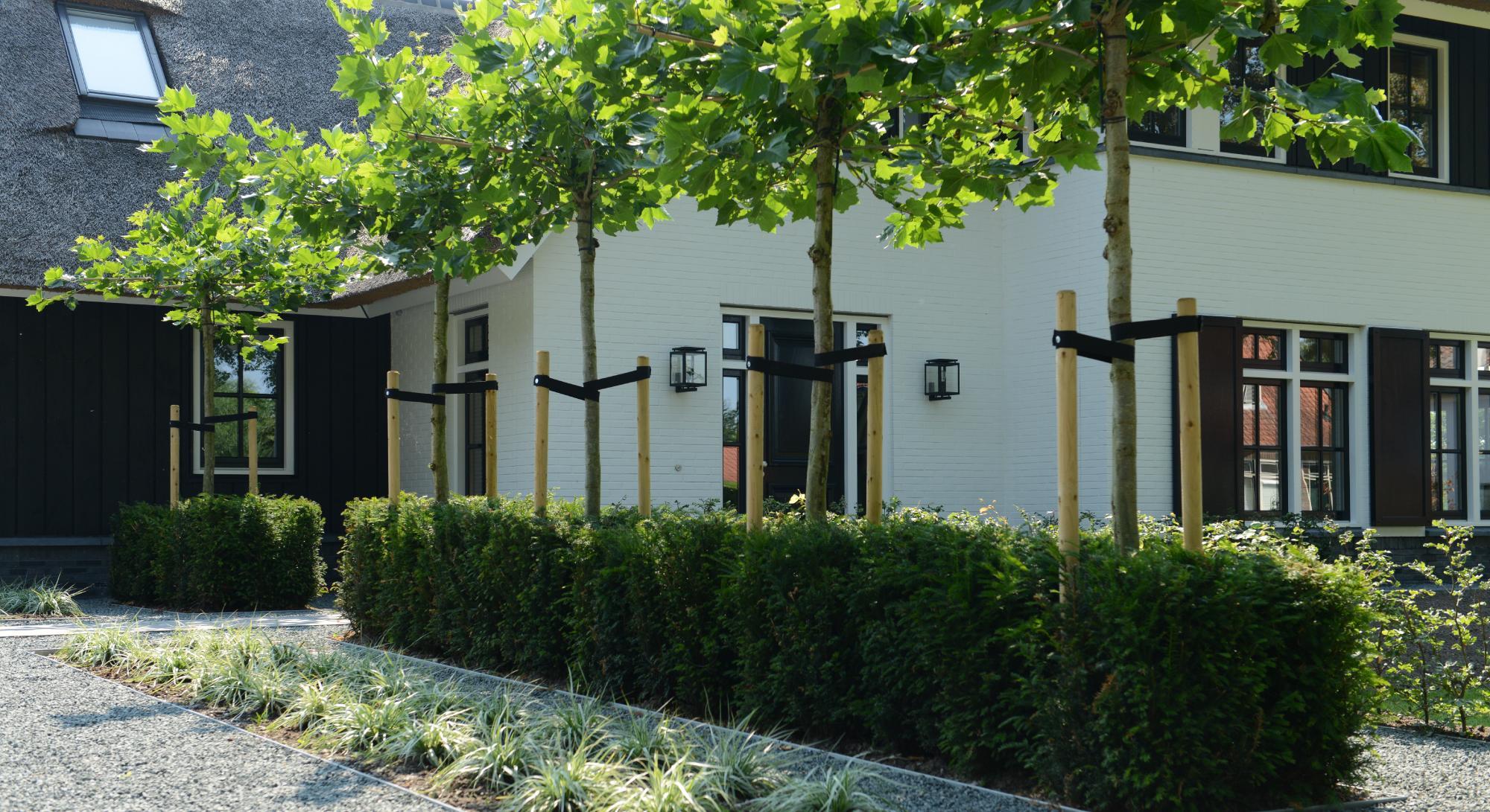 Strakke tuin bij modern landhuis   Rodenburg Tuinen